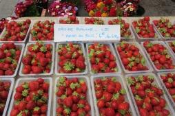 Dijon: Sat morning markets